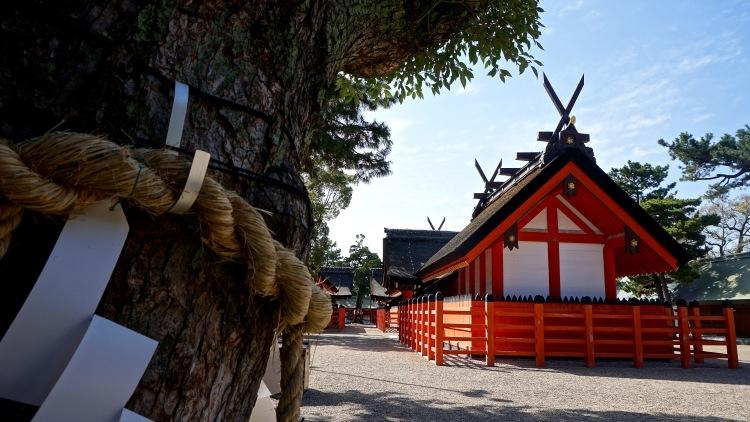 38 Japan Travel Temple