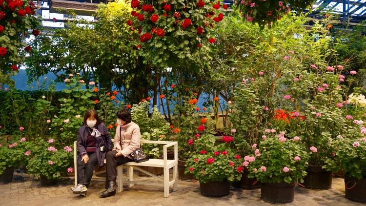 102 Japan Travel Nagoya Garden