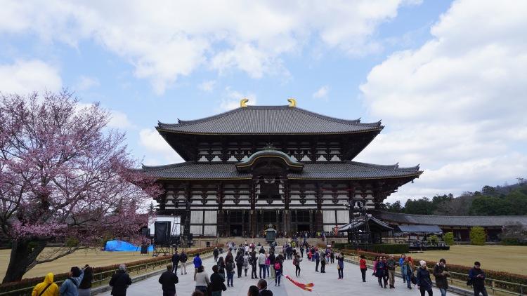 85.4 Japan Travel Nara